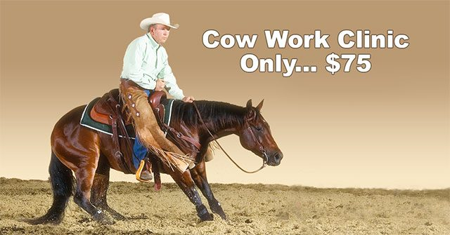 cow-work-clinic640